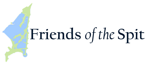 Friends of the Spit
